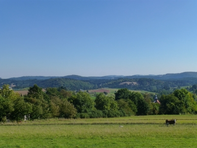 Kronbergweg -
