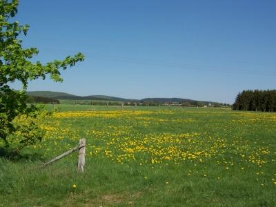 Um den Bollenberg (A8) Medelon