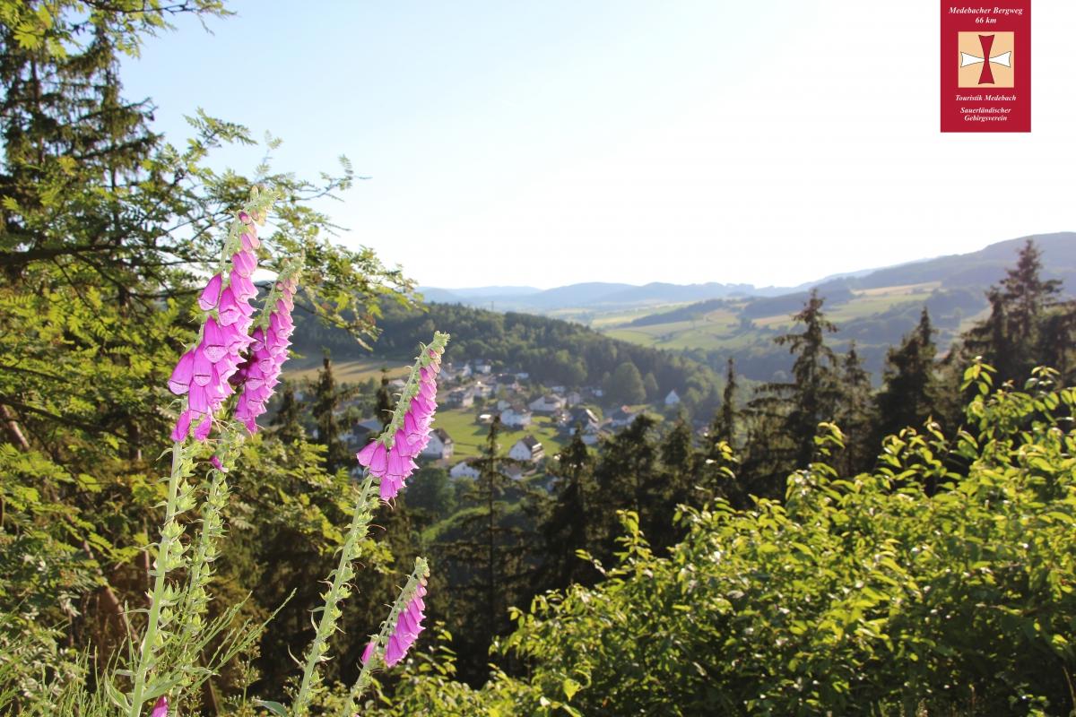 Der Medebacher Bergweg bei Dreislar
