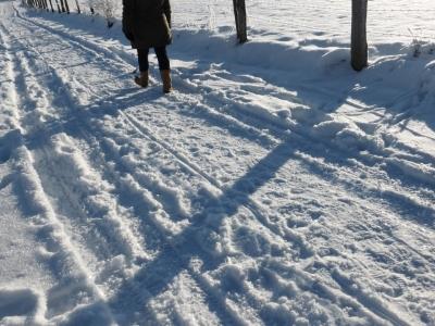 Winterwandelen in Dreislar