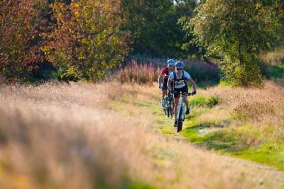 Naar de Galgenberg (Tour 9) - Bike Arena Sauerland